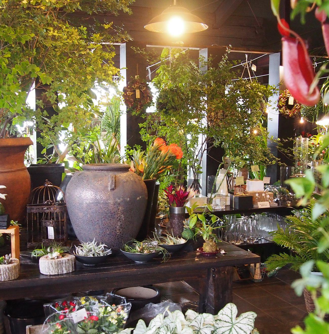 お花屋さんパラボッセの店内